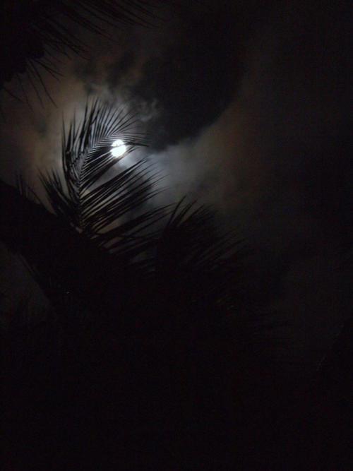 Luna Dominicana