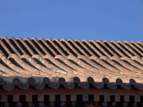 Dunas en el tejado