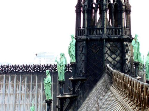 Vencejo sobre Notre Dame